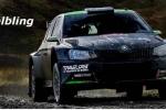 Al Rally Sweden Luca Hoelbling è il primo italiano al traguardo dopo una stupenda gara