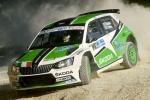 25° Rally Adriatico:  la prima giornata è di Scandola-D'Amore (Skoda)