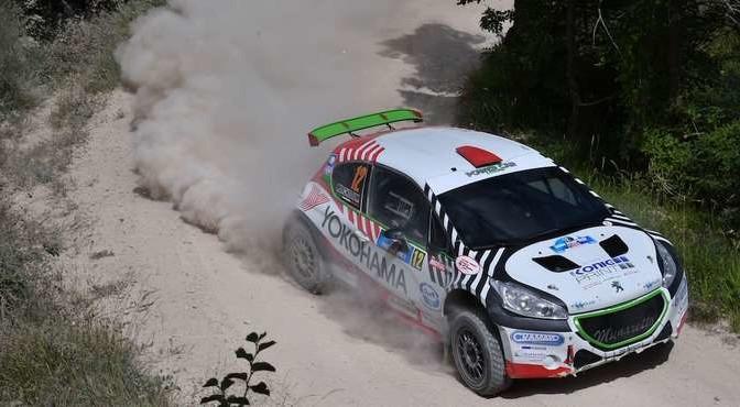 Nicolo Marchioro, Marco Marchetti (Peugeot 208 T16 R R5 #12, Power Car Team)