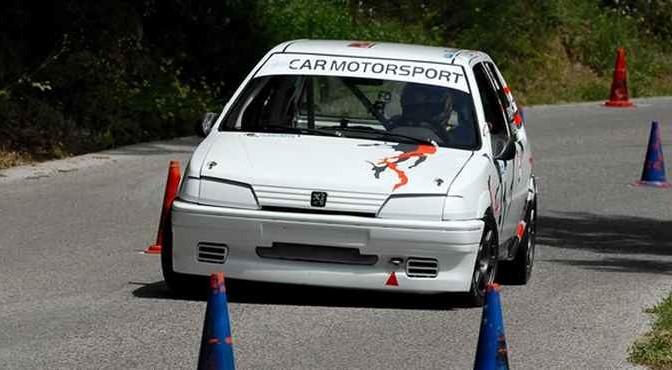 car_3006